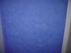 bleu 1.jpg
