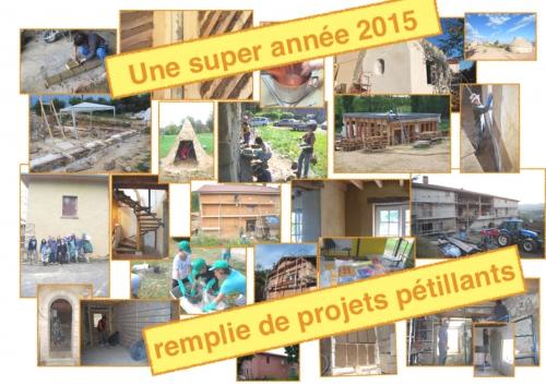 meilleurs voeux 2015.pdf.jpg